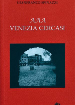 AAA Venezia cercasi-0